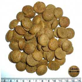 Croquettes adulte chien haut de gamme digestible