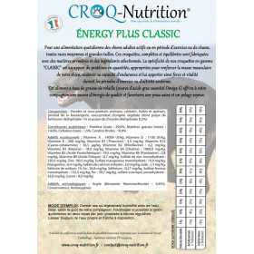 Croquettes chien adulte besoin nutritionnel intense