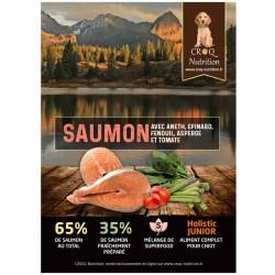 croquettes superfood holistic pour chiot au saumon fraîchement préparé