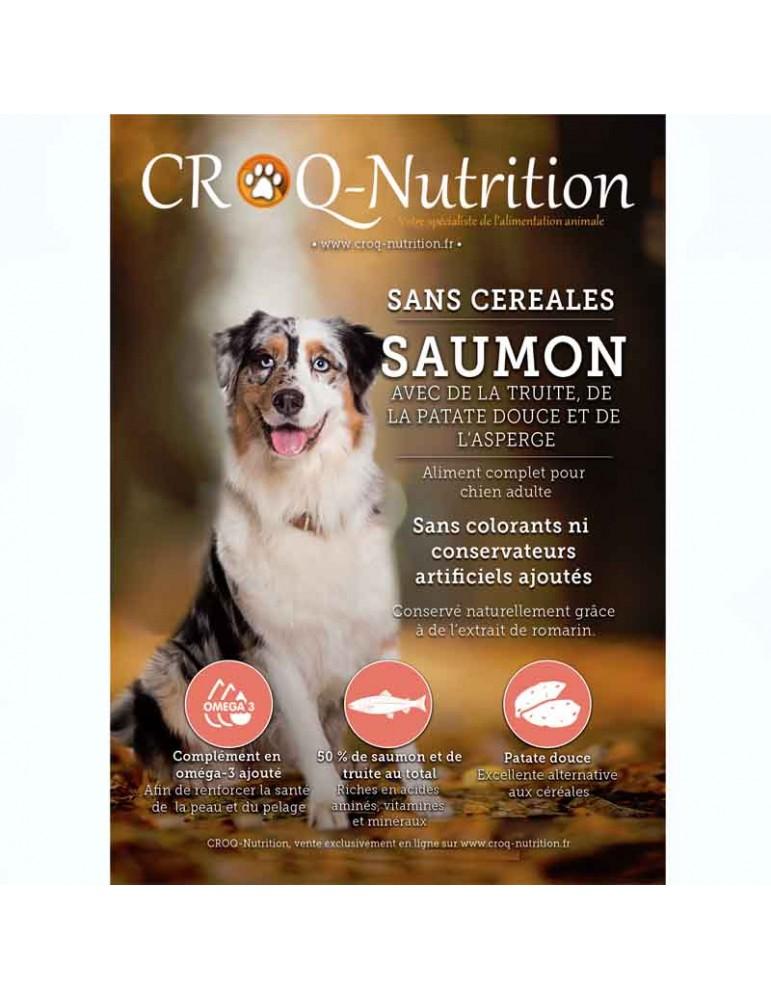 croquettes chien sans céréales grain free 50% saumon et truite sac de 12kg