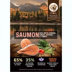 Croquettes superfood holistic pour chien adulte au saumon fraîchement préparé