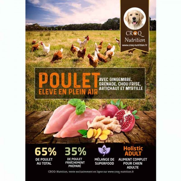 Croquettes superfood holistic pour chien adulte au poulet fraîchement préparé