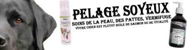 Peau & Pelage chien