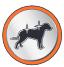 Pelage soyeux croquettes chien adulte maintenance premium