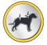 Pelage soyeux chien petite taille croquettes mini