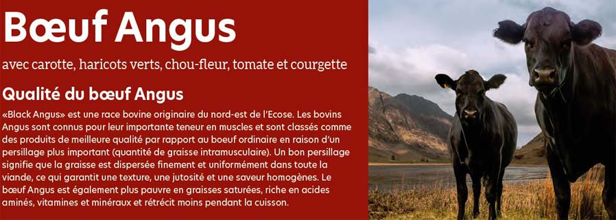 boeuf angus croquette chien petite race superfood croq-nutrition