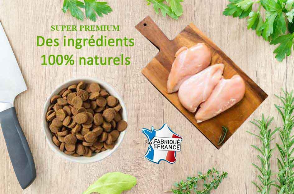 croquettes_naturelles_croq-nutrition.jpg