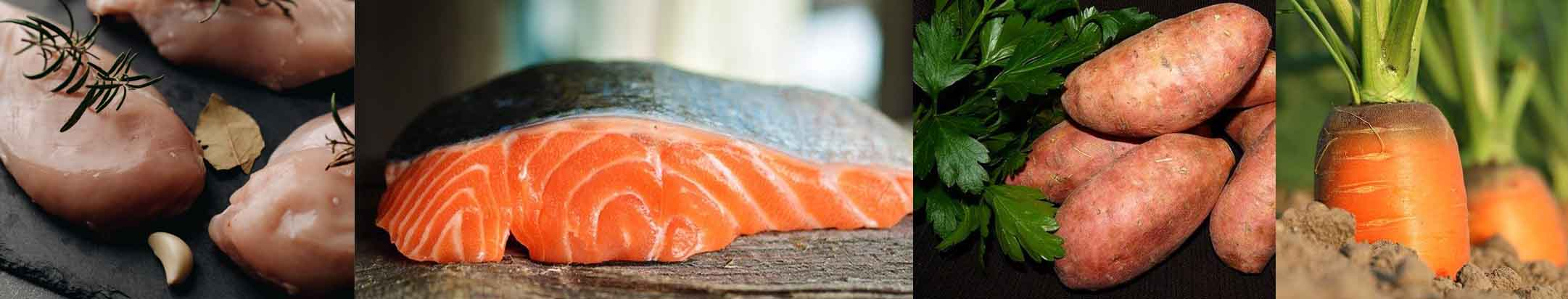 croquettes chien poulet saumon patate douce carotte