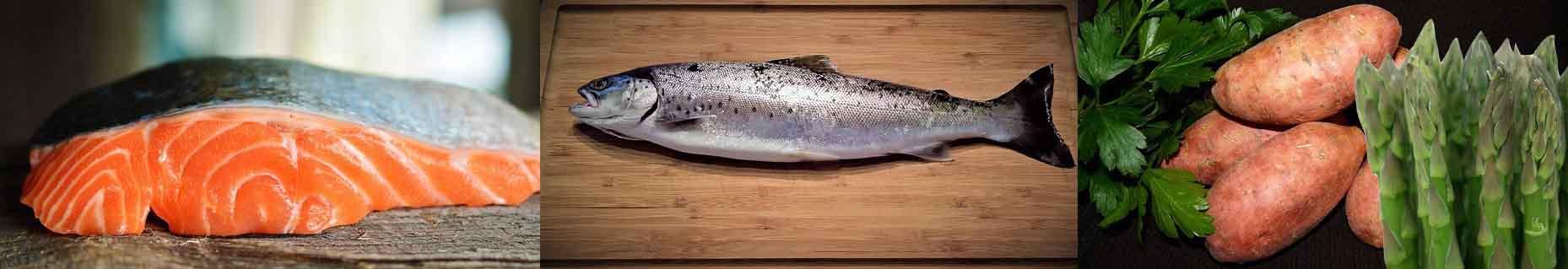 croquettes chien saumon truite patate douce asperge