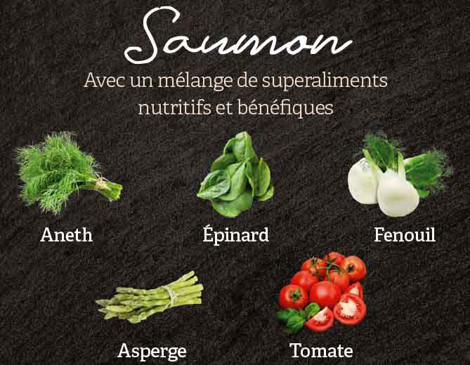 ingredients superaliments croquettes superfood saumon croq-nutrition