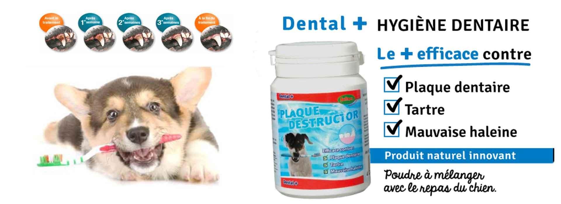 Anti tartre pour chien plaque destructor bubimex