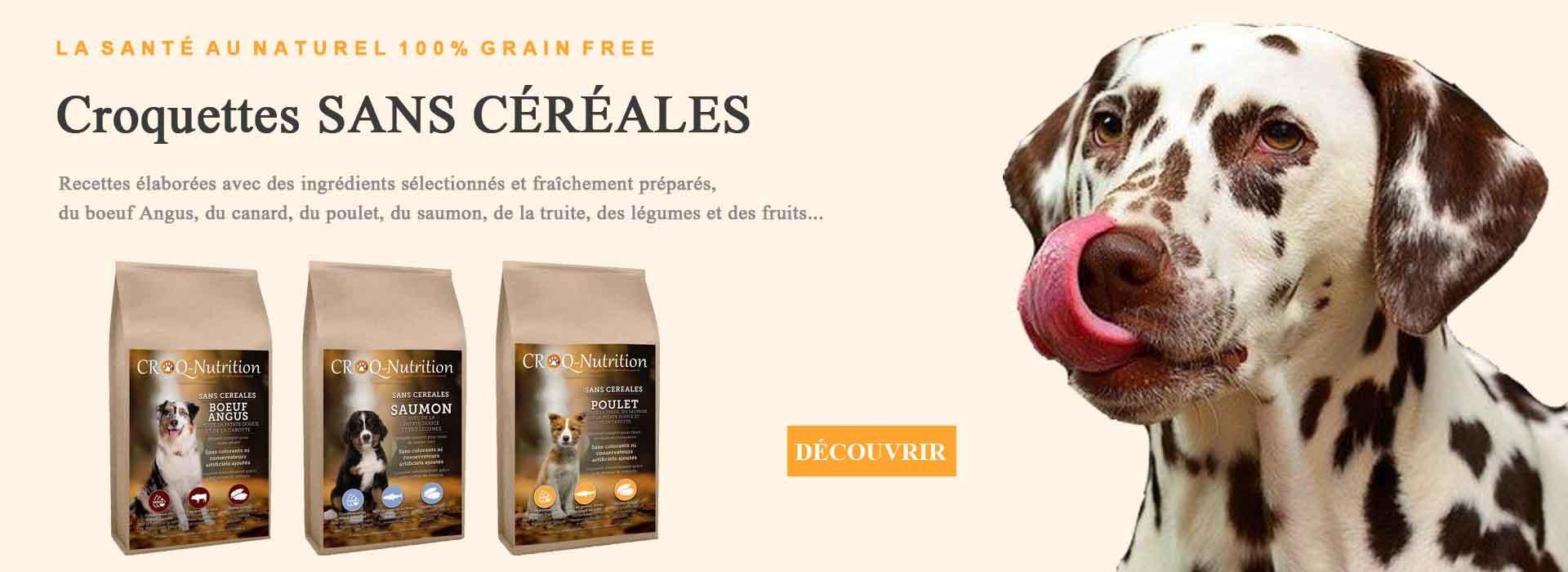 Croquettes pour chien sans céréales boeuf canard poulet fruits légumes