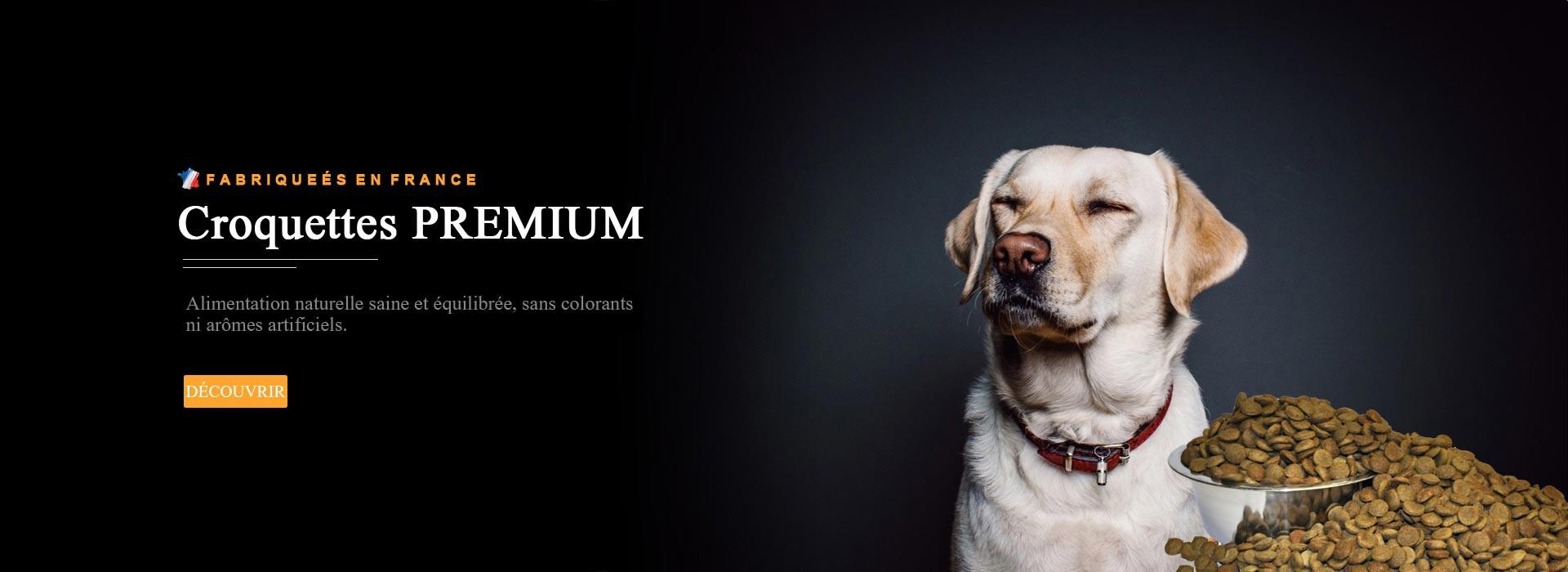 croquettes PREMIUM chien